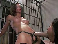 Ostre zabawy w więzieniu