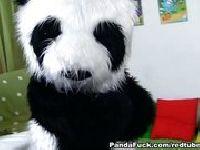 Zabawa z Pandą