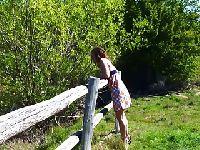 Margie w lesie