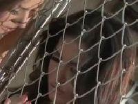 Sunny Leone i Tori Black bawią się cipkami