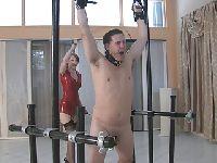 Kutas w niewoli