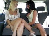 Taksiarz poluje na suki