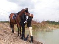 Ujeżdżanie starego konia