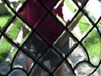Krissy Lynn zamknięta w klatce