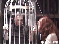 Niewolnik w klatce