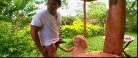 Publiczny handjob w tropikach